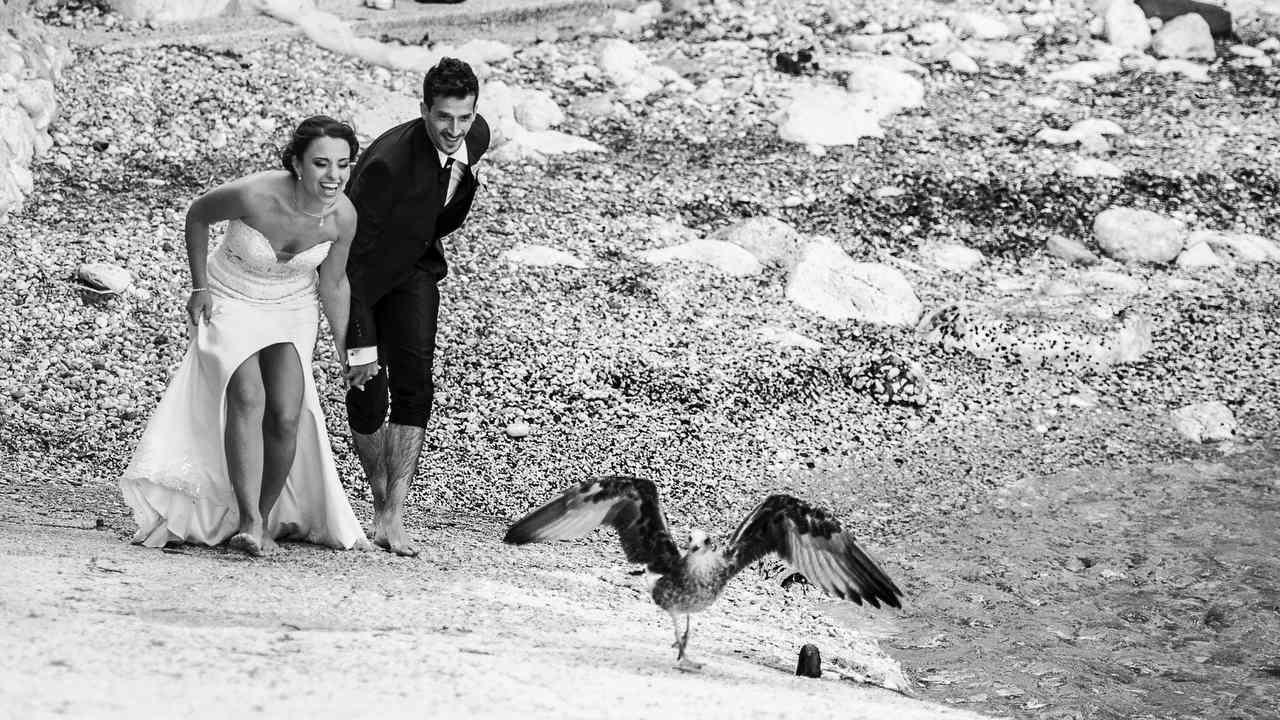 Sposi con Gabbiano alla Tonnara di Scopello - Tommaso D'Angelo Photography